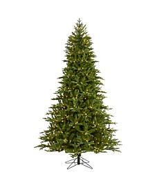 Cambridge Fir Artificial Christmas Tree with 800 Clear Warm Multifunction LED Lights with Instant Connect Technology and 1644 Bendable Branches