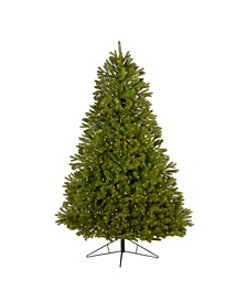 Cambridge Spruce Flat Back Artificial Christmas Tree with 500 Warm Multifunction LED Lights and 960 Bendable Branches