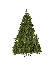 "Sierra Spruce ""Natural Look"" Artificial Christmas Tree with 500 Clear LED Lights and 2213 Tips"