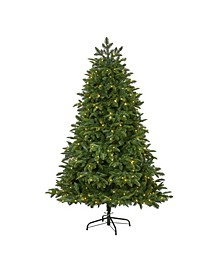 Wyoming Fir Artificial Christmas Tree with 350 Clear LED Lights and 844 Bendable Branches