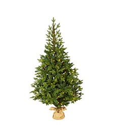 "Fraser Fir ""Natural Look"" Artificial Christmas Tree with 190 Clear LED Lights, A Burlap Base and 1217 Bendable Branches"