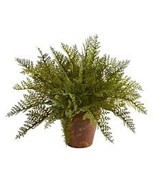 Maiden Hair Fern Artificial Plant in Decorative Planter