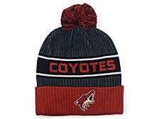 Arizona Coyotes 2020 Locker Room Pom Knit Hat