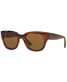 Women's Sunglasses, RB4178 52