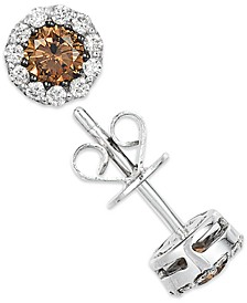 White and Chocolate Diamond Stud Earrings in 14k White Gold (1/2 ct. t.w.)