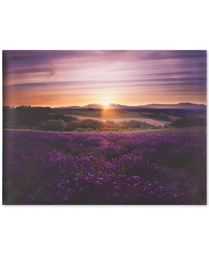 Graham & Brown - Lavender Sunset Canvas Print