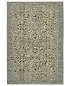 Karastan Titanium Andeols Seaglass Area Rug Collection