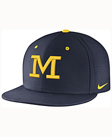 Nike Michigan Wolverines True Vapor Fitted Cap