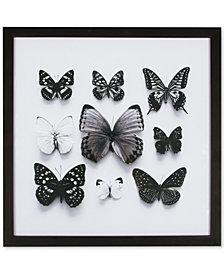 Graham & Brown Butterfly Studies Framed Print