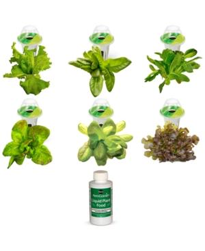 Image of 6-Pod Heirloom Salad Greens Seed Kit