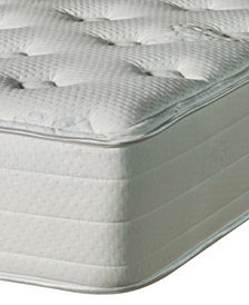 Nature's Spa by Paramount Eminence Latex 14'' Luxury Firm Mattress- King