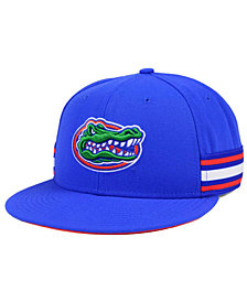 Nike Florida Gators True Woven Stripe Snapback Cap