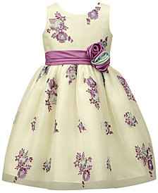 Jayne Copeland Embroidered Tulle Overlay Dress, Toddler Girls