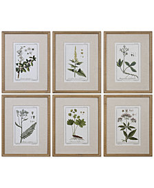 Uttermost Green Floral Botanical Study Wall Art, Set of 6