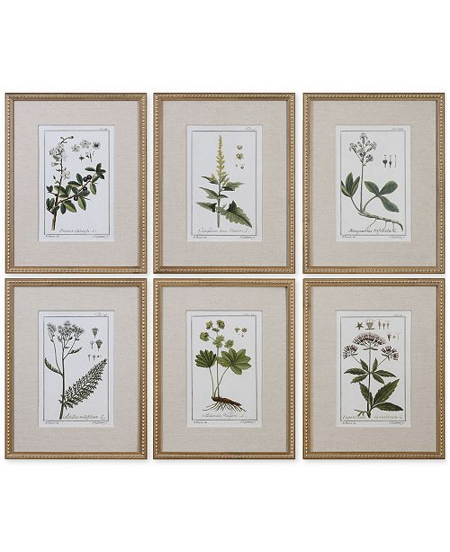 Uttermost Green Floral Botanical Study Wall Art, Set of 6 - Wall Art ...