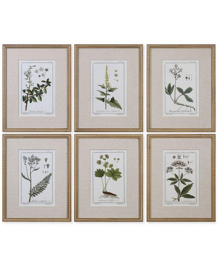 Uttermost - Green Floral Botanical Study Wall Art, Set of 6