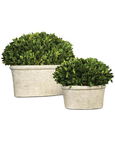 Uttermost Preserved Boxwood Oval Domes, Set of 2