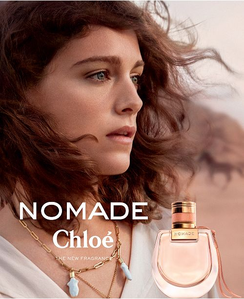 Image result for chloe nomade