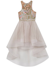 Rare Editions Big Girls Embroidered High-Low Hem Dress