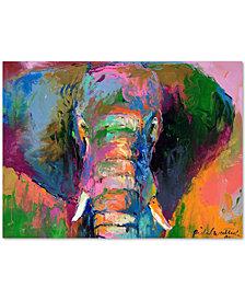 Richard Wallich 'Elephant 2' Canvas Wall Art