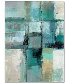 "Silvia Vassileva 'Island Hues Crop I' 35"" x 47"" Canvas Wall Art"