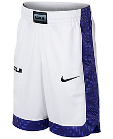 Nike Big Boys Dry LeBron Graphic Basketball Shorts