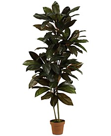5' Cordyline Real Touch Artificial Plant