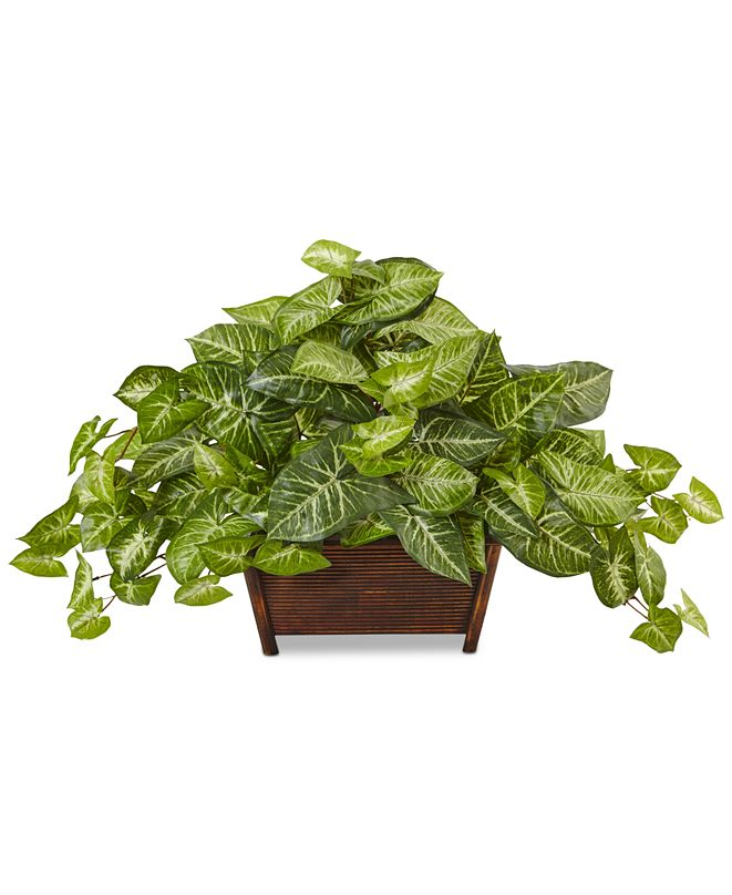 Nearly Natural Nephthytis Artificial Plant in Wood Planter