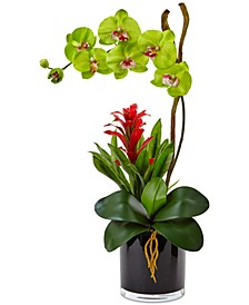 Orchid & Bromeliad Artificial Arrangement in Glossy Black Cylinder Vase