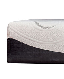 Sealy 14'' Hybrid Mattress, Quick Ship, Mattress in a Box- - Twin XL
