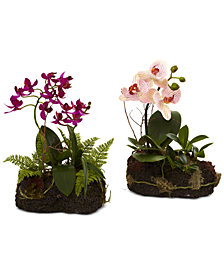 Nearly Natural 2-Pc. Orchid Island Artificial Arrangement Set