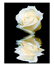"'Abstract Rose Blanc' Oversized 40"" x 30"" Canvas Art Print"