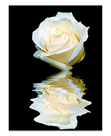 "Ready2HangArt 'Abstract Rose Blanc' Oversized 40"" x 30"" Canvas Art Print"