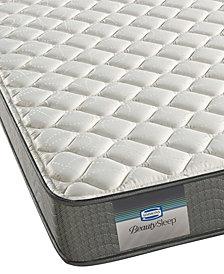 """BeautySleep 6"""" Windsor Firm Mattress- Full"""
