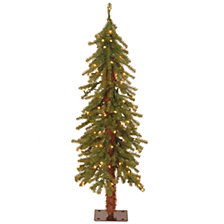 National Tree 4' Hickory Cedar Tree with 100 Clear Lights
