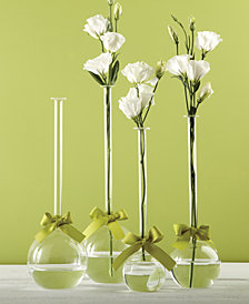 Sleek And Chic Set of 4 Bubble Vases with Sage Green Ribbon Includes 4 Sizes