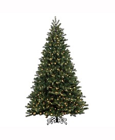 7.5' Noble Spruce Instant Shape Artificial Christmas Tree with 800 Warm White LED Lights