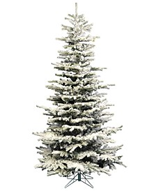 6.5' Flocked Sierra Fir Slim Artificial Christmas Tree Unlit