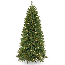 National Tree 7 .5' Lehigh Valley Pine Hinged Tree with 500 Clear Lights