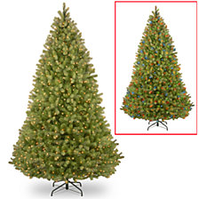 "National Tree 9' ""Feel-Real: Bayberry Spruce Hinged Tree with 1000 Dual Color LED Lights and PowerConnect System"