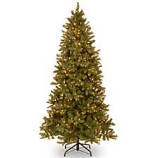 National Tree 6 .5' Feel Real Downswept Douglas Slim Fir with 500 Clear Lights