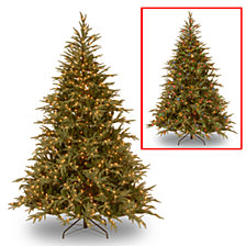 "National Tree 9' ""Feel Real"" Frasier Grande Hinged Tree with 1500 Dual LED Lights"
