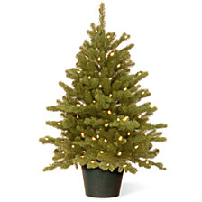 National Tree 3' Feel Real(R) Hampton Spruce Small Wrapped Tree in Growers Pot with 100 Clear Lights