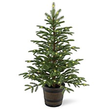 4' Feel Real(R) PE Norwegian Spruce Entrance Trees in Wiskey Barrel Pot with 100 Clear Lights