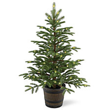 National Tree Company 4' Feel Real(R) PE Norwegian Spruce Entrance Trees in Wiskey Barrel Pot with 100 Clear Lights