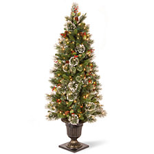 National Tree 5' Wintry Pine Entrance Tree Cones, Red Berries and Snowflakes and 100 Clear Lights