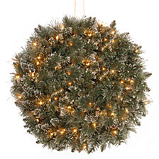 "National Tree Company 16"" Glittery Bristle Kissing Ball with 50 Battery Operated Soft White LED Lights"
