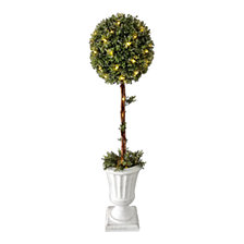 "National Tree Company 41"" Topiary with Light in Pot"