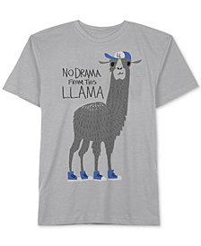 Jem Toddler Boys Llama Drama Graphic Cotton T-Shirt
