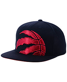 Mitchell & Ness Toronto Raptors Metallic Cropped Snapback Cap